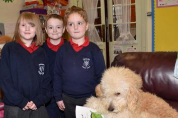 Therapy dog Koda is 'top of the class' at Harryville Primary School